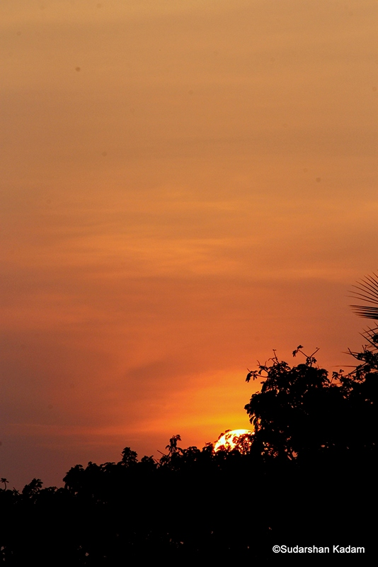 Sunset from 30 Jan 2012